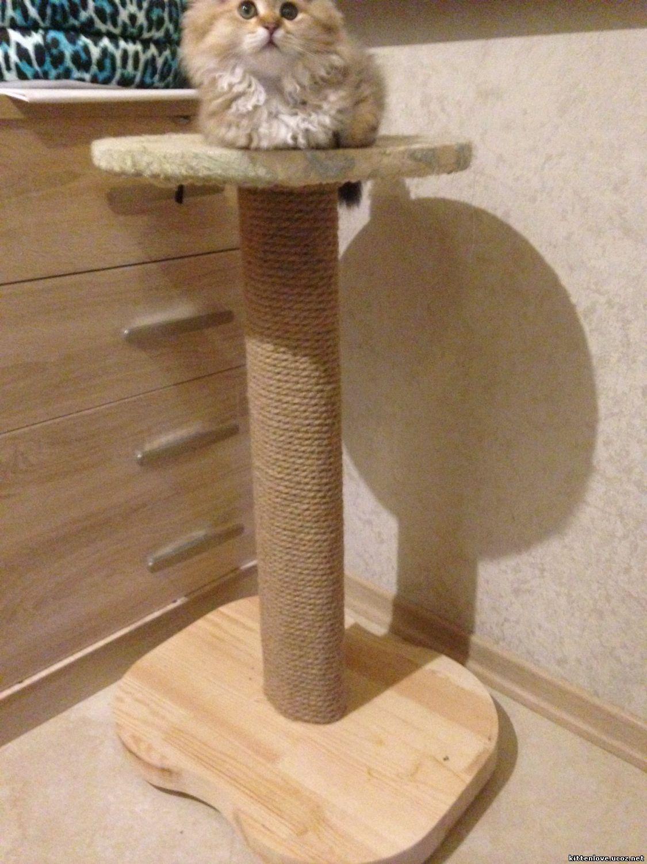 Когтеточка для кошек из дерева своими руками 18